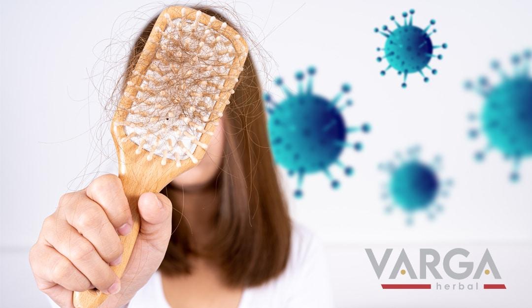 hajhullás koronavírus